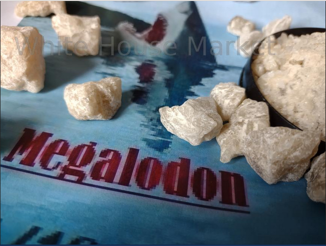 Interview with Megalodon, a Darknet Vendor of Lean and MDMA